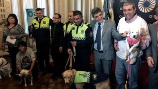 Tucumán tendrá un registro único de mascotas