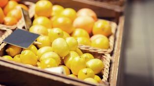 Acuerdan un plan de trabajo operativo para la exportación de limones del NOA a EEUU