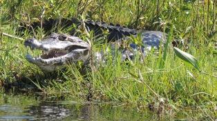 El Ministerio de Turismo invertirá $150 millones en el corredor ecoturístico del Litoral