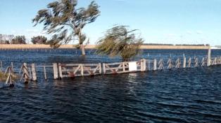 El ministro de Producción aseguró que hay 200 mil hectáreas con agua