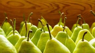 Prorrogan por 365 días la emergencia económica de la cadena de peras y manzanas