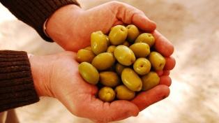 Comienza la 76° la Fiesta Nacional de la Olivicultura en la Rioja