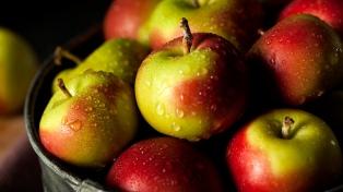 Autorizan el envío de manzanas a Brasil