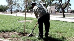 La capital lanza el mayor plan de forestación de los últimos años