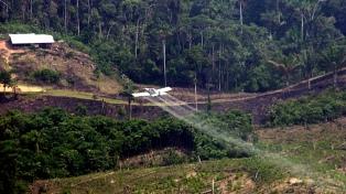 A pesar de la presión de EE.UU, el gobierno no fumigará la coca