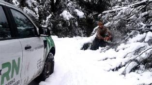 Se despliega la ayuda para los damnificados por el temporal de nieve