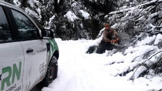 Resultado de imagen para temporal nieve bolson