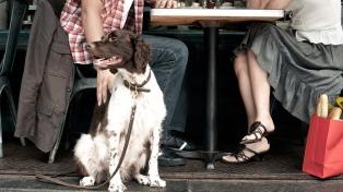 La mayoría de los porteños no quiere mascotas en los restaurantes