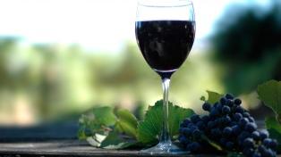Buscan posicionar a la Patagonia como una región productora de vinos de alta calidad