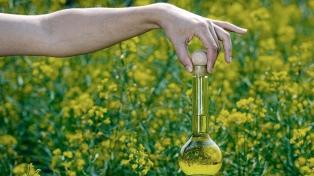 Las exportaciones de biodiesel crecieron 59% durante el primer cuatrimestre
