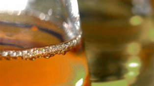 Biodiésel: Argentina estudia recurrir a la OMC por los aranceles que aplica EEUU