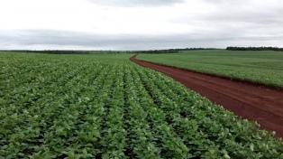 """""""Con el nuevo impuesto a la soja queremos financiar el desarrollo con ingresos genuinos"""""""