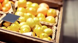 """La apertura de Brasil a los limones argentinos: """"Es un avance para los productores"""""""