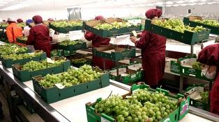 El Indec relevó 250.801 explotaciones agropecuarias en todo el país