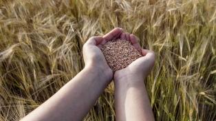 El Gobierno entregó semillas a pequeños productores agropecuarios