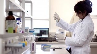 Las universidades nacionales suman a 340 científicos del Conicet