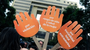 Diputados demandan al Constitucional por cambios en la Ley del Aborto