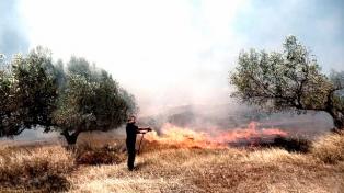 Controlan un incendio que azotó por cuatro días a la isla de Citera