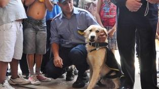 Reintegran al perro que pretendieron desalojar y causó el desplazamiento de un jefe policial
