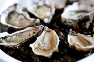 En Francia ya venden ostras en máquinas expendedoras para hacer frente a los antojos