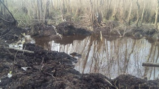 Despliegan el operativo de rescate de los restos del avión que cayó hace 27 días en el  Delta del Paraná