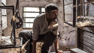 Nueve estrenos llegan a la cartelera cinematográfica esta semana y cinco son nacionales