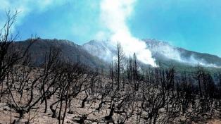Combaten un incendio de bosques en cercanías de Lago Puelo