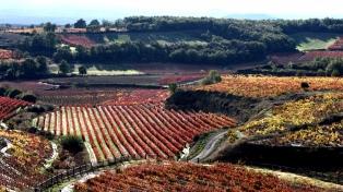 Empresarios chilenos y riojanos apuestan al desarrollo del corredor bioceánico