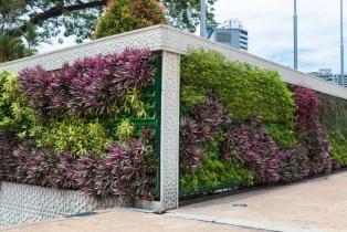 Claves y secretos sobre los jardines verticales y techos verdes