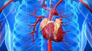 Por primera vez implantan un cardiodesfibrilador subcutáneo en un adolescente