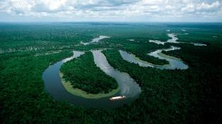 Michel Temer revocó un polémico decreto para explotar la amazonía brasileña