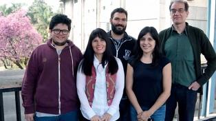 """Investigadores argentinos desarrollan """"nanohilos"""" que podrían usarse en pantallas transparentes"""
