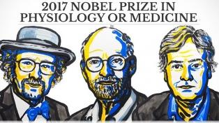 """Tres estadounidenses ganan el Nobel de Medicina por su descubrimiento sobre el """"reloj biológico"""""""