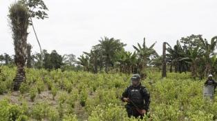 El asesinato de campesinos deja al descubierto un conflicto por erradicación de drogas