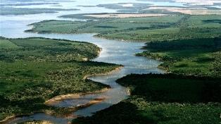 El Parque Nacional Iberá sumará más de 42.000 hectáreas