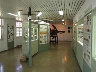 Nueva Noche de los Museos en Jujuy