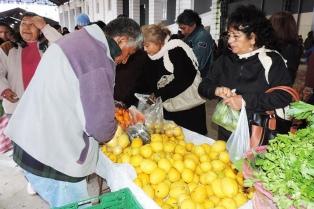 Avanza el cultivo de frutas tropicales en la región de Yungas