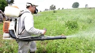 Prohíben el uso de agroquímicos durante la carga de granos