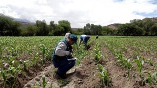 El gobierno provincial trabaja con Chile para cumplir normas fitosanitarias con miras a Asia
