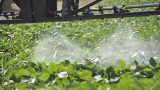 Austria es el primer país de la UE que prohíbe el uso del herbicida glifosato