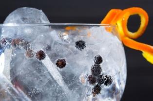 Llegó la hora del gin