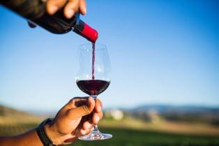 Por primera vez, vinos argentinos recibieron certificaciones de huella ecológica