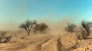 """La provincia controló los incendios forestales y el panorama es """"optimista"""""""