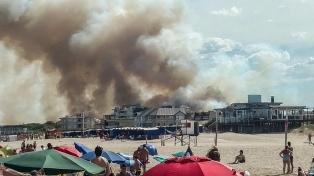 Un incendio destruyó ocho hectáreas de bosques en el sur de Villa Gesell