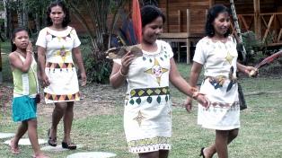 """Mapuches, pueblos de la Amazonía y los """"últimos incas"""", en la agenda del Papa"""