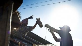 El 65,7% de los trabajadores brasileños teme perder el empleo