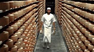 Clausuraron dos plantas lácteas y decomisaron casi 1200 hormas de quesos