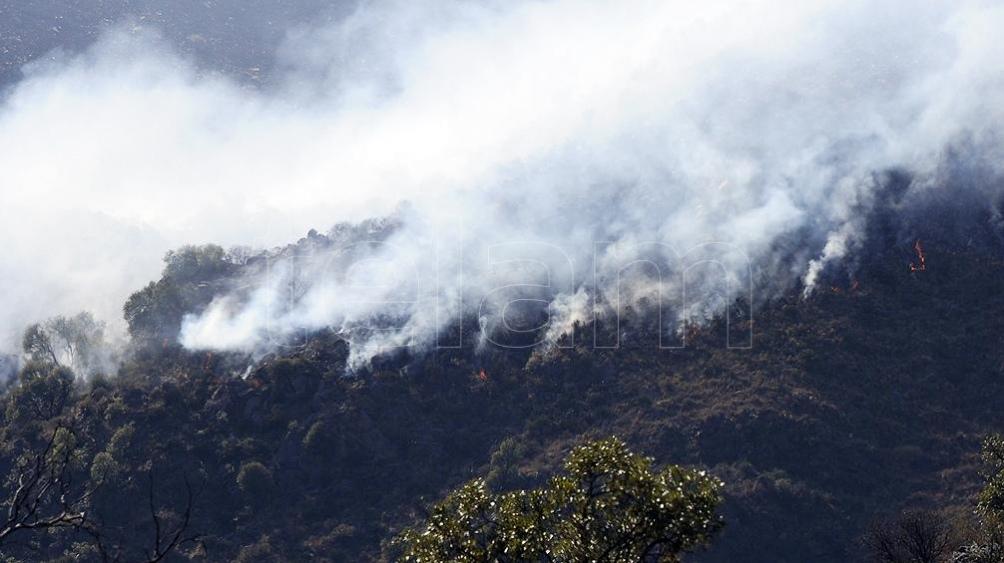 Incendios consumieron 800 mil hectáreas en La Pampa