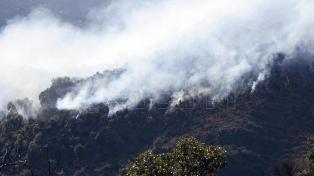 Brigadistas combaten un incendio que cruzó la ruta 40 en Epuyén