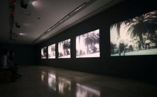 Continúan durante el verano numerosas exposiciones de la Bienalsur